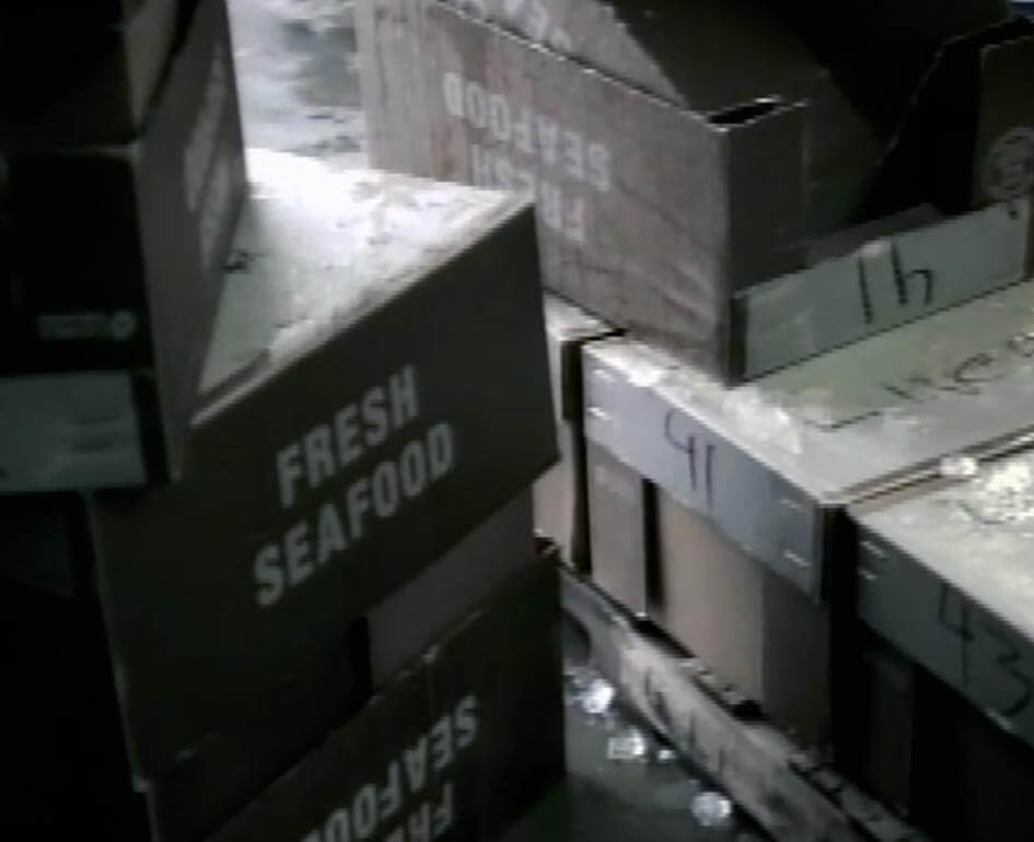 I need to ship 3000 pounds of monkfish